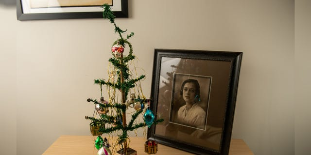 """Despite its long history, the tree's owner admits that it looks a """"bit dodgy."""""""