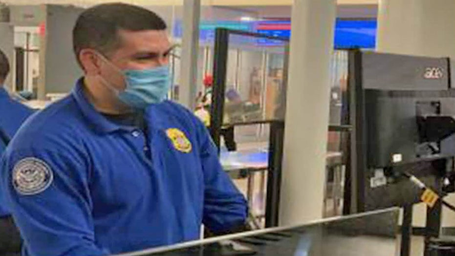 TSA reminds passengers to 'remain calm and respectful' after security officers attacked, bitten