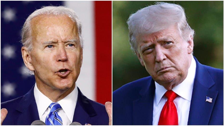年度回顾: 2020 选举战