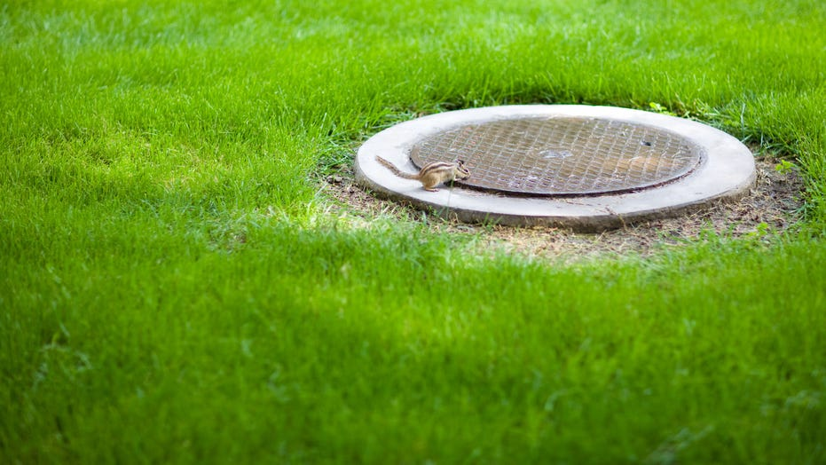 Homeowner in England finds hidden shelter under manhole cover in backyard, has unusual plans for it