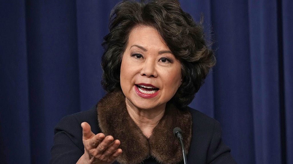 Transportation Secretary, McConnell's wife Elaine Chao steps down from post