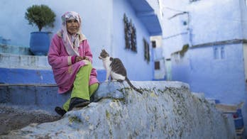 Morocco's iconic blue city suffers coronavirus tourism decline as pandemic continues: report