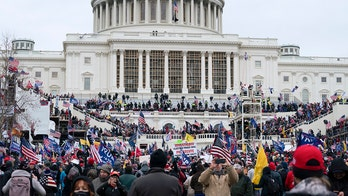 Karl Rove: Protestors storm Capitol -- this is how mobs act, not patriots and all American hearts should ache