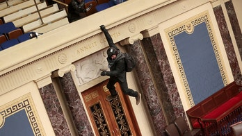 Man accused of hanging from Senate balcony appears in court
