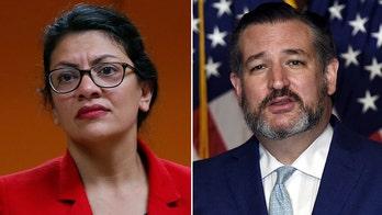 'Squad' member Rashida Tlaib calls Ted Cruz 'dumba--' for tweet against Paris climate accords