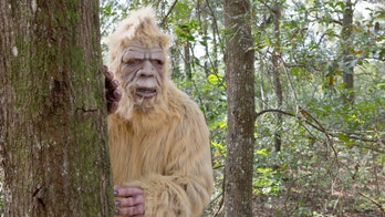 Oklahoma Rep. introduces bill to create Bigfoot 'hunting season'
