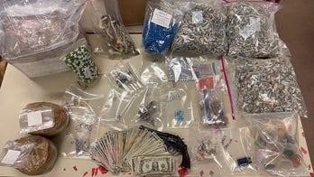 California drug bust nets stunning haul: Over $1M in mushrooms, LSD and more
