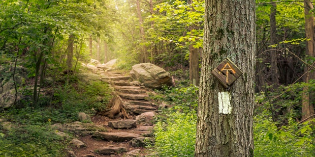 The Appalachian Trail Conservancy has said that it will not recognize thru-hikers until the coronavirus pandemic has been deemed 'under control.' (iStock)