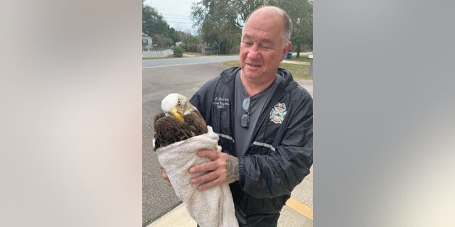 Driver Engineer Jerry Brown ofPasco County Fire Rescue assisted the two children who found the injured bald eagle.
