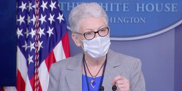 White House domestic climate advisor Gina McCarthy