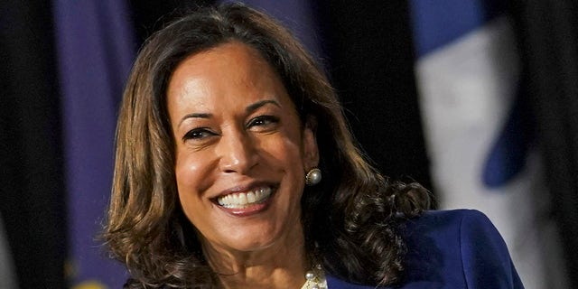 Vice President Harris, when she was a presidential candidate, supported mandatory gun buybacks. (Toni L. Sandys/The Washington Post via Getty Images)