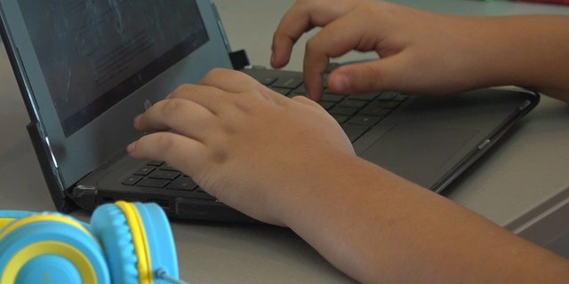 More and more school districts across the country are moving to virtual learning as COVID-19 cases continue to rise. Substitute teachers are having to learn new software programs while trying to adapt to each schools methods (Stephanie Bennett/Fox News).