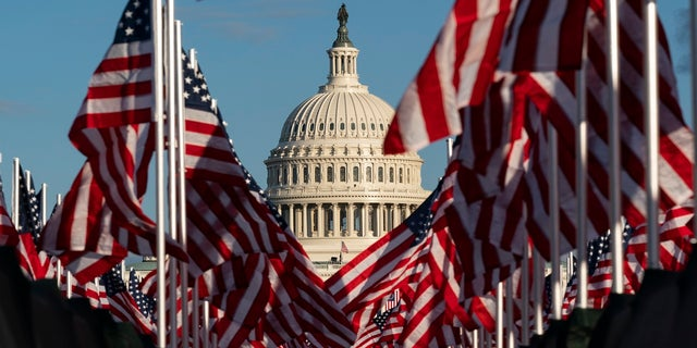 Flags are seen on the National Mall with the U.S. Capitol behind them. (AP)