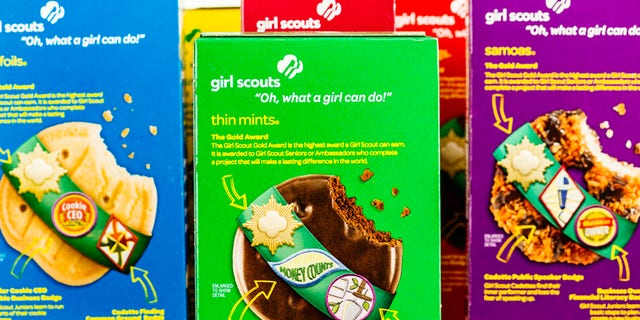 First-grader Allie Shroyer, from Scottsdale, Arizona, met her Girl Scout cookie sales goal after her adorablesales pitch to a doorbell security camera went viral. (iStock)
