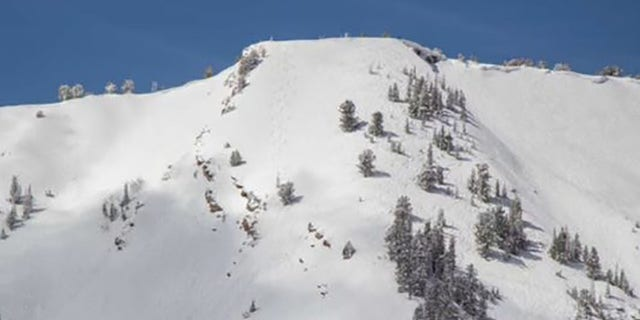 The avalanche occurred in an area known as Square Top near Park City Mountains Canyon Village, 官员说.