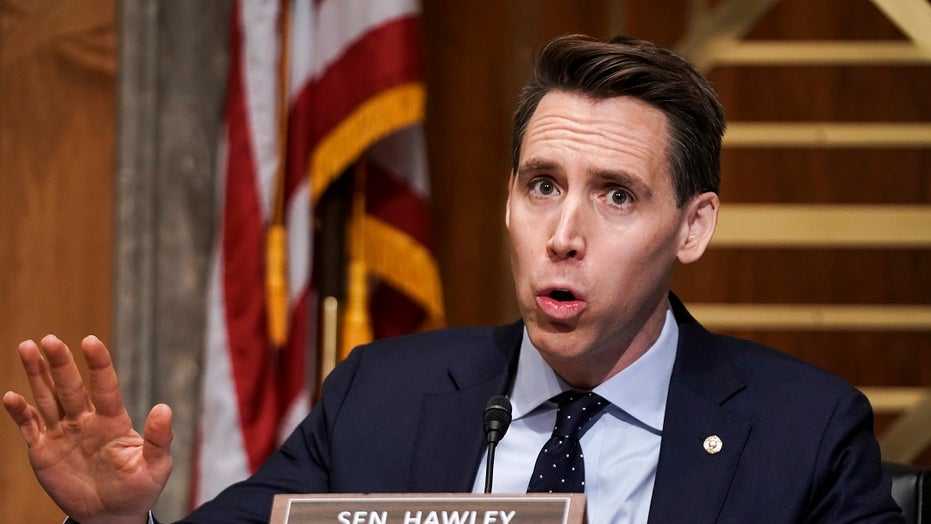 Hawley scores raucous applause when he brings up objection to Electoral College certification