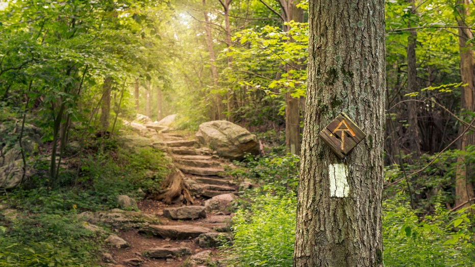 Appalachian Trail thru-hikers won't be recognized this year over coronavirus concerns