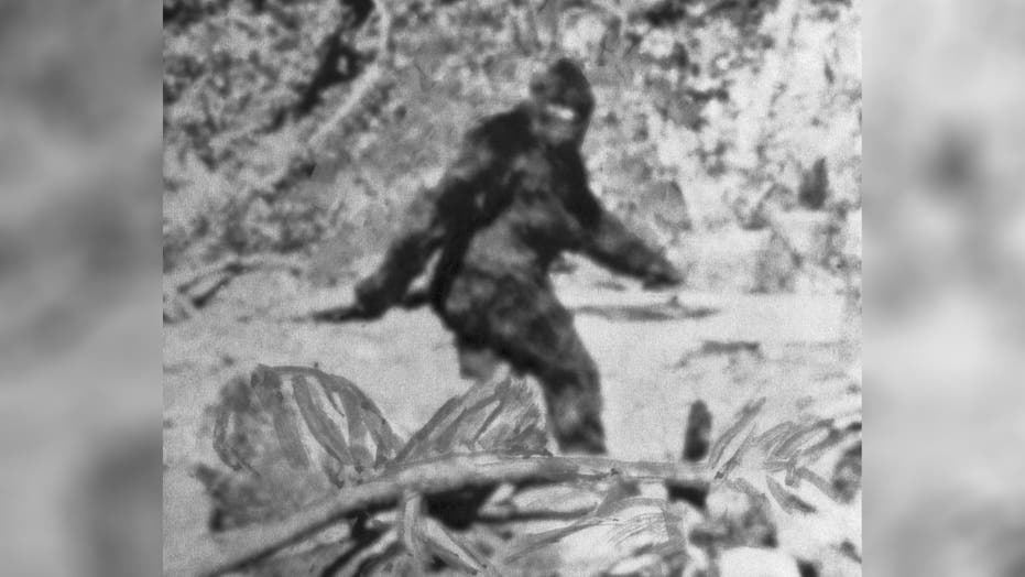 Oklahoma Rep. faces backlash for Bigfoot 'hunting season,' says he's been called an idiot