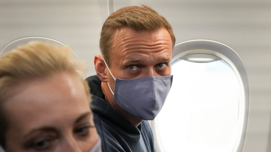 Kremlin foe Alexei Navalny returns to Russia