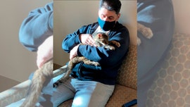 Man reunited with cat after it vanished 15 years ago: 'It was very emotional'