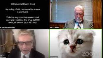 Texas lawyer speaks out after going viral over kitten filter