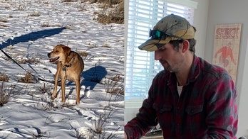 Missing Colorado hiker's dog found alive as search for owner is suspended