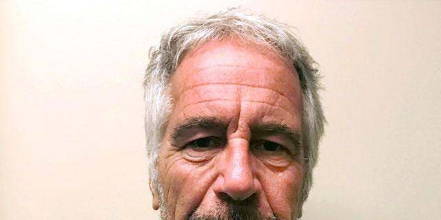 Jeffrey Epsteinon March 28, 2017. (New York State Sex Offender Registry via AP)