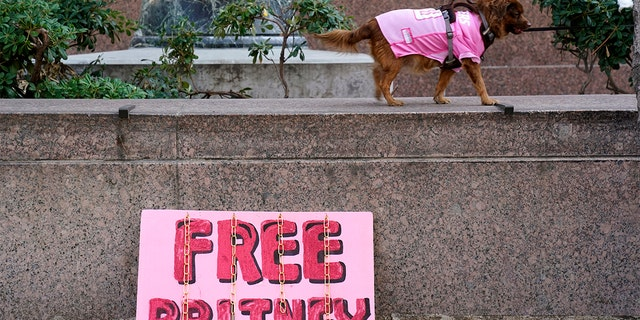 A dog belonging to a Britney Spears supporter walks by a 'Free Britney' sign outside a court hearing concerning the pop singer's conservatorship at the Stanley Mosk Courthouse, Thursday, Feb. 11, 2021, in Los Angeles. (AP Photo/Chris Pizzello)