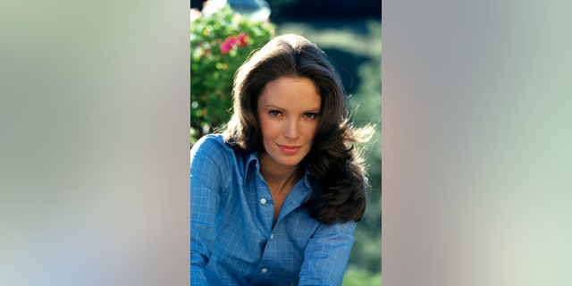Jaclyn Smith in 'Charlie's Angels.'