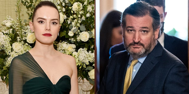 Daisy Ridley slammed Ted Cruz for ditching Texas in the middle of an emergency.