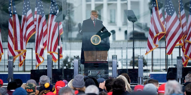 Then-President Trump speaks to supporters from The Ellipse near the White House on Jan. 6, 2021, in Washington, D.C.