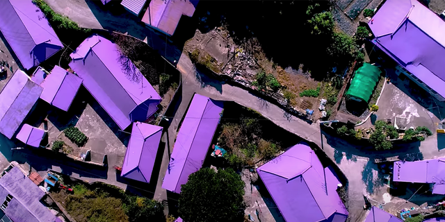 Shades of the secondary hue dominate the isle in the South Jeolla Province, as seen across 400 purple rooftops.