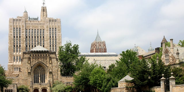 """""""New Haven, Connecticut, USA - June 1, 2011: A view of the Yale campus, with the entrance to the renowned Sterling Library at the left. This is one of the largest research libraries in the United States, and is noted for its """"gothic revival architecture."""""""