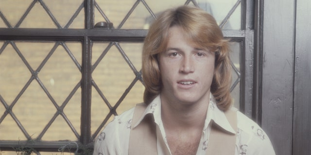 Singer Andy Gibb died in 1988.