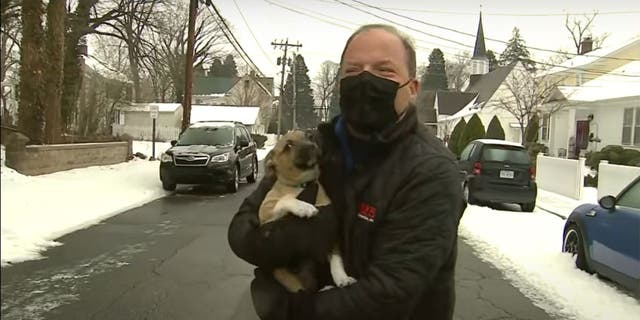 FOX 5 DC reporter Bob Barnard was reporting live on icy weather and road conditions in northern Virginia last Friday morning when a puppy ran out into the street to greet him.
