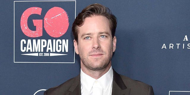 Armie Hammer has reportedly been dropped by WME, his talent agency. (Photo by Gregg DeGuire/FilmMagic)