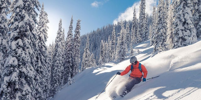 Il ministro della Salute italiano Roberto Speranza ha emesso un'ordinanza che vieta lo sci amatoriale nel Paese fino al 5 marzo.