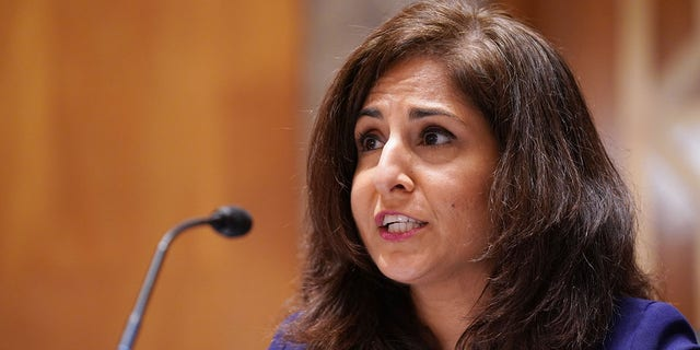 Neera Tanden testifies before the Senate Homeland Security and Government Affairs committee in Washington, Feb. 9, 2021. (Getty Images)