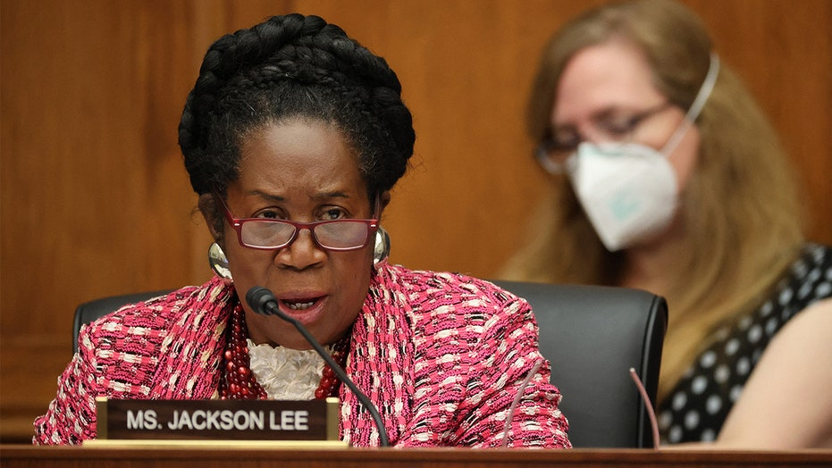 Gun control bill from Rep. Sheila Jackson Lee would create national firearm registry, require licensing