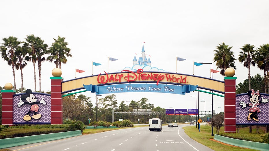 Teen saves drowning toddler during spring break trip to Disney World