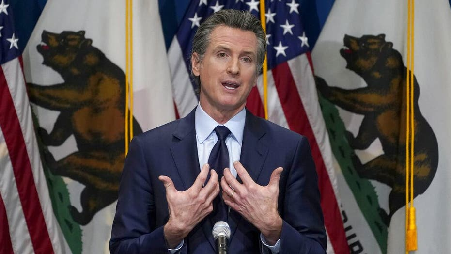 California Gov. Newsom challenger's spox throws shade at Democrat's 'accessibility and transparency'