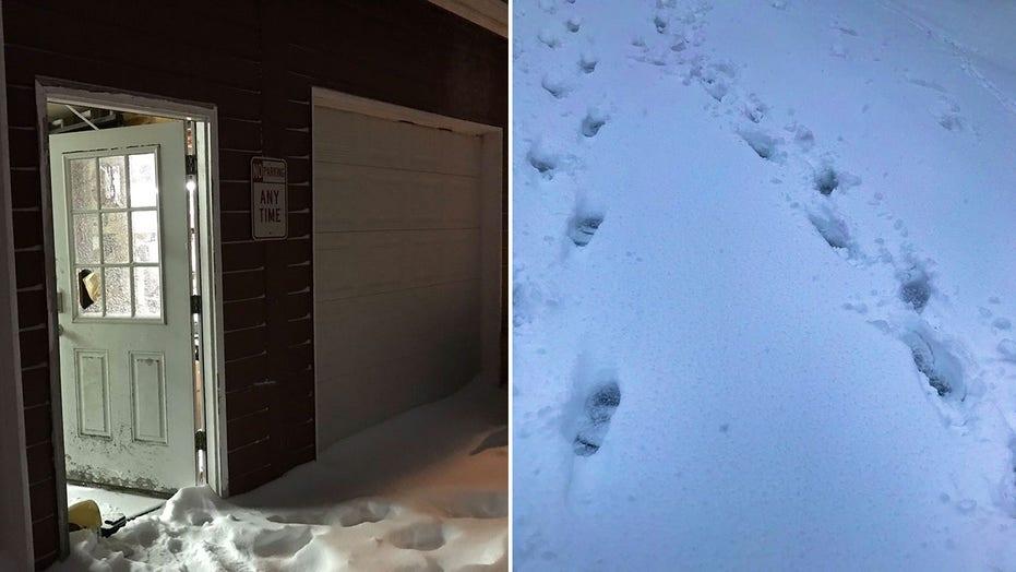 Washington deputies nab burglary suspects after following footprints in the snow