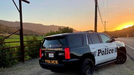 California surfer dies after colliding with fellow surfer