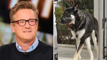 Joe Scarborough suggests Biden dog Major 'prepare to meet Doggy Jesus' after second biting incident