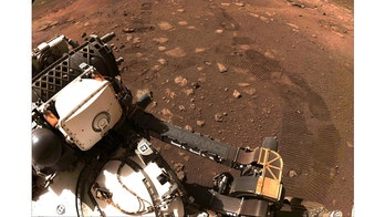 NASA celebrates Mars rover Perseverance's first steps, other milestones