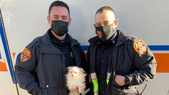 New York cops save dog, cat from burning house after escaping children tell them pets were inside