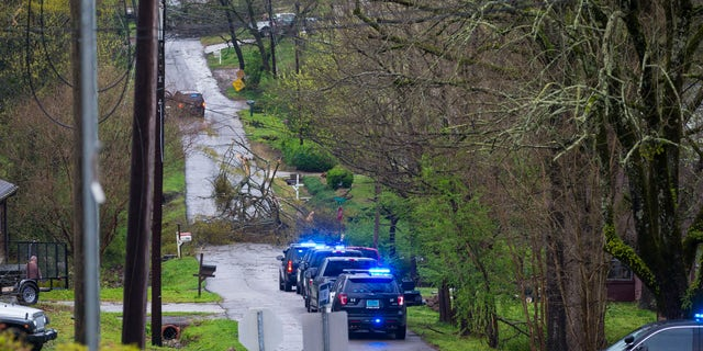Police respond to a downed tree across 1st Ave W on a day of extended severe weather, Thursday, March 25, 2021, in Helena, Ala. (AP Photo/Vasha Hunt)