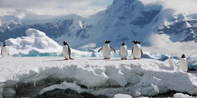 Passengers aboard the 17-night solar eclipse cruise from Silversea Cruises and Classic Journeys will visit Antarctica and will be able to kayak, hike, explore and see wildlife on the continent and its islands.