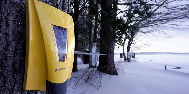 A hand sanitizer dispenser remains mounted to a tree at Camp Fernwood, a summer camp for girls, Saturday, Feb. 20, 2021, in Poland, Maine. (AP Photo/Robert F. Bukaty)