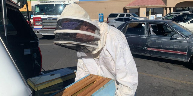 It took off-duty firefighter and beekeeper Jesse Johnson about two hours to remove the bees.